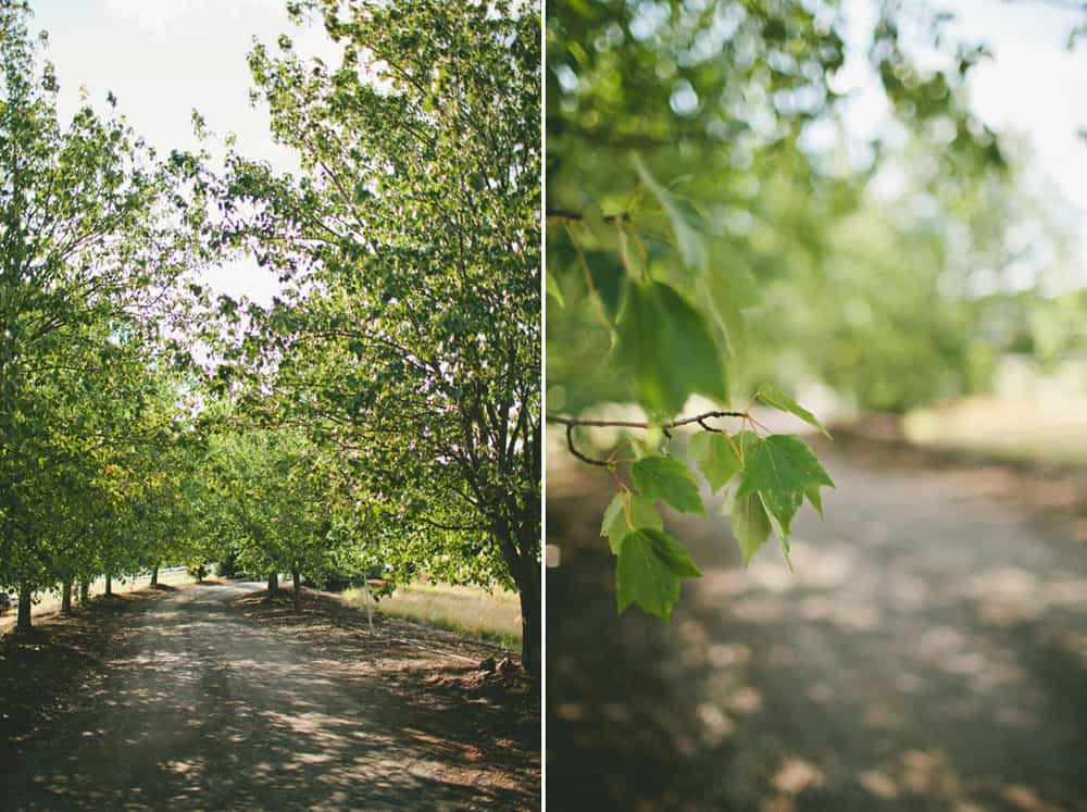 !3_beautiful_spokane_summer_backyard_camp_love_wedding