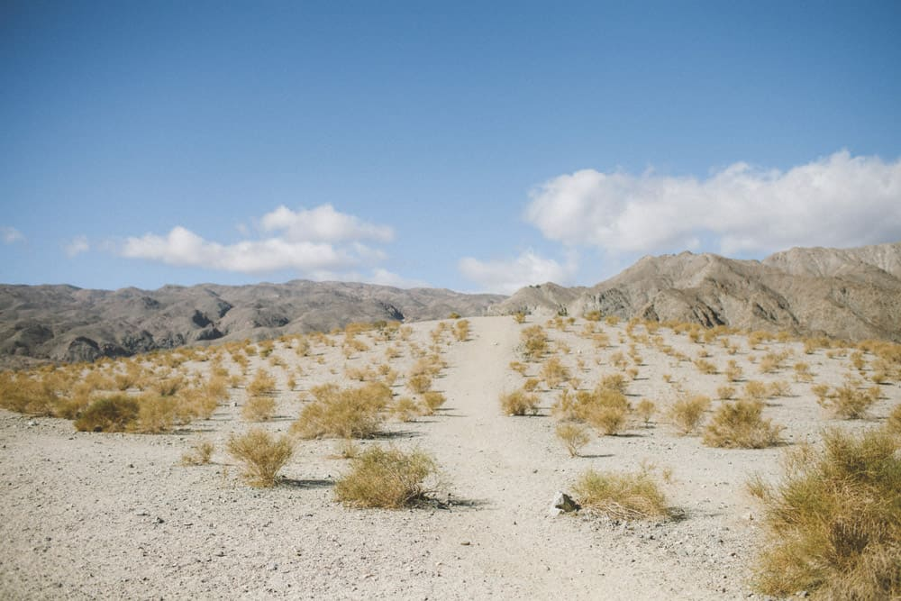 6_palm_springs_mountains_hike_desert_adventure_vacation