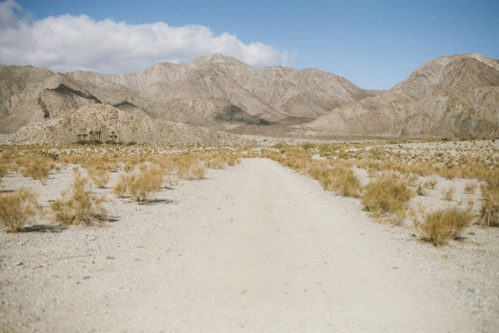 7_palm_springs_mountains_hike_desert_adventure_vacation