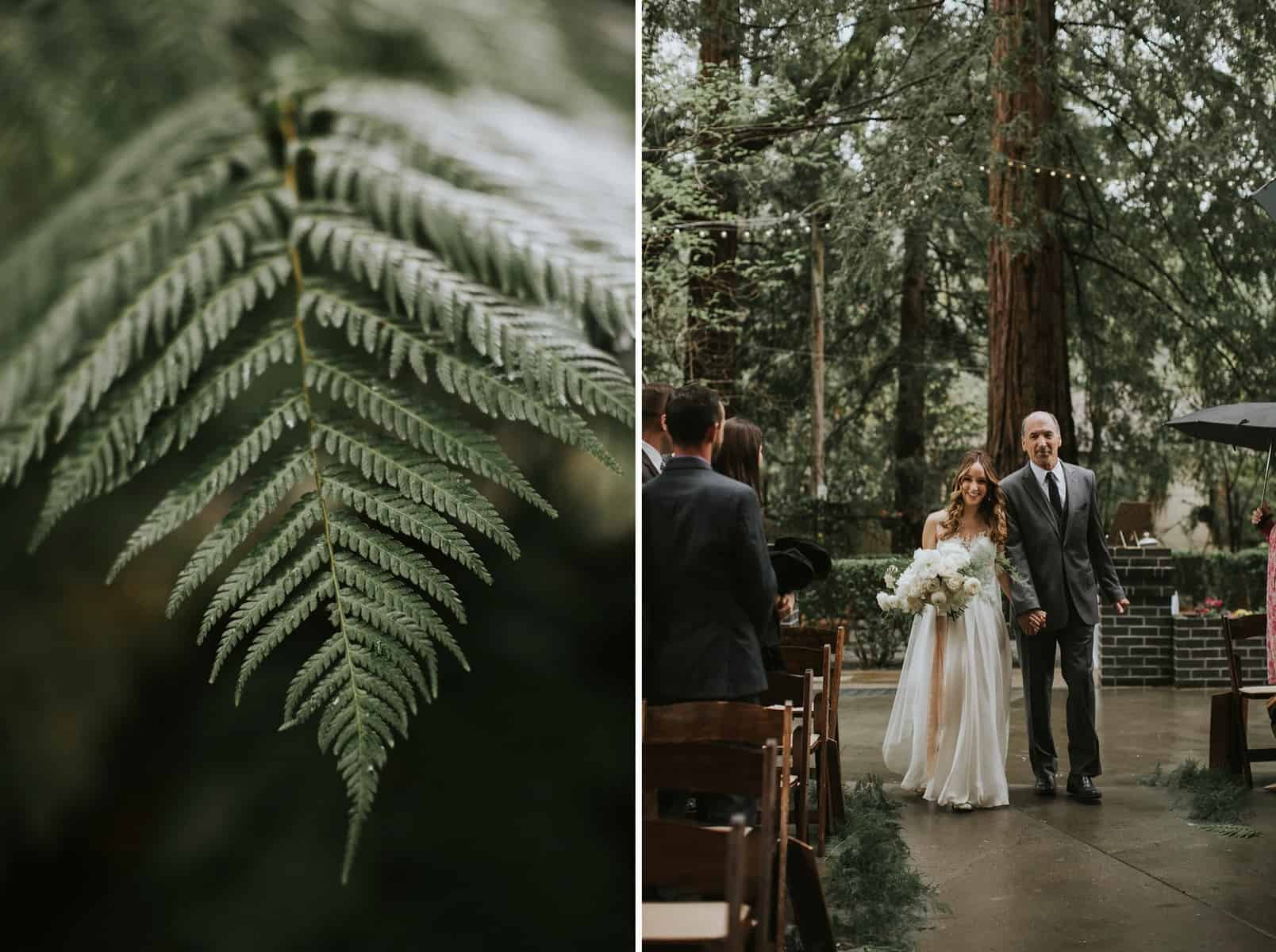 Victoria Carlson Lindsay Eugene Redwoods Northern California Bay Area Wedding 0048