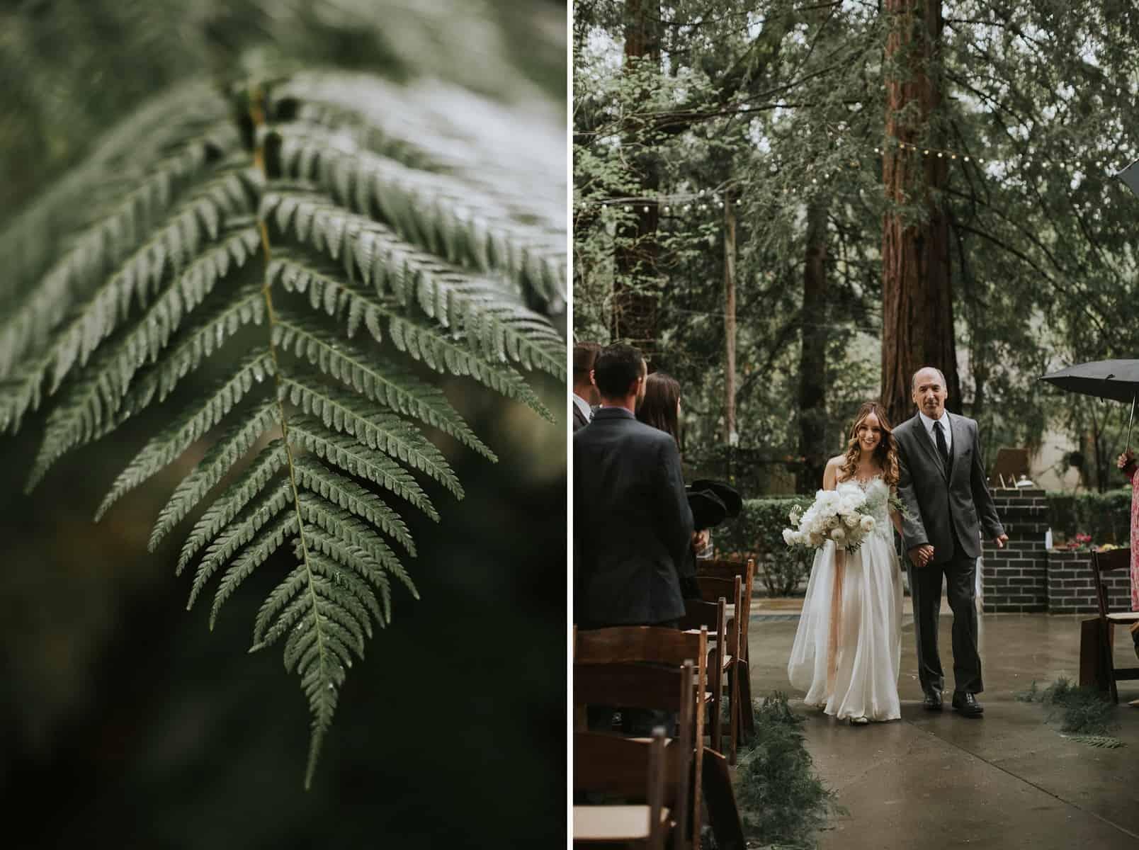 Victoria Carlson Lindsay Eugene Redwoods Northern California Bay Area Wedding 0048